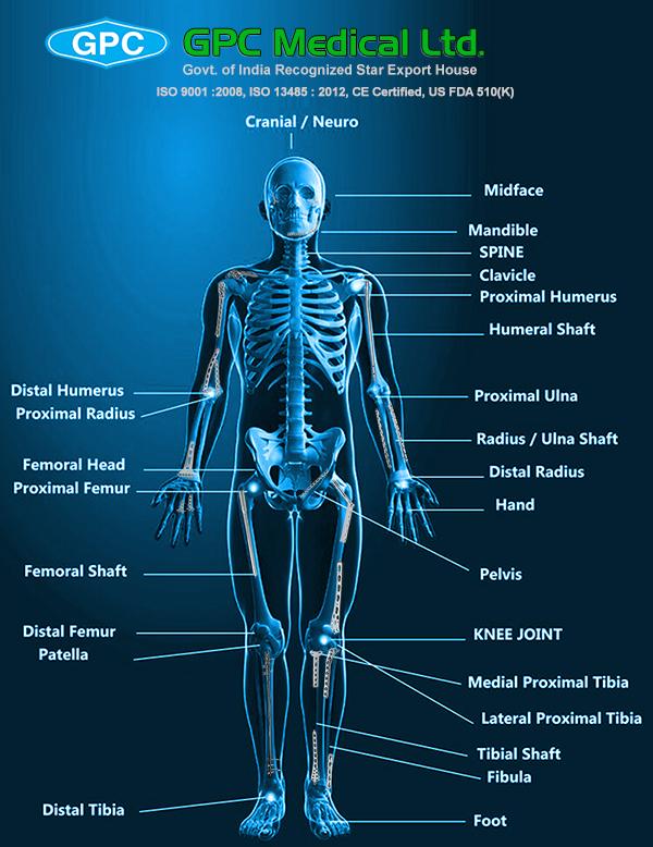 Orthopedic Trauma Implants Orthopedic Implants